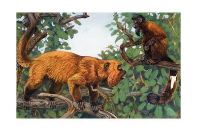 Painting of a Red Howler Monkey and a Bearded Saki Monkey