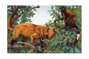 Painting of a Red Howler Monkey and a Bearded Saki Monkey by Elie Cheverlange