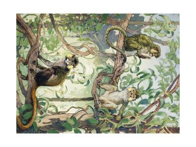 Painting of Mustache and Talapoin Guenon Monkeys in Treetops