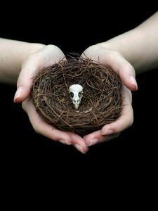 Birds Nest in Cupped Hands by Elisa Lazo De Valdez