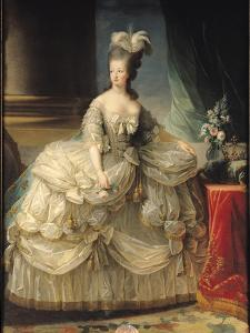 Marie Antoinette (1755-93) Queen of France, 1779 by Elisabeth Louise Vigee-LeBrun