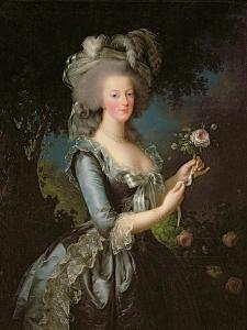 Marie Antoinette (1755-93) with a Rose, 1783 by Elisabeth Louise Vigee-LeBrun
