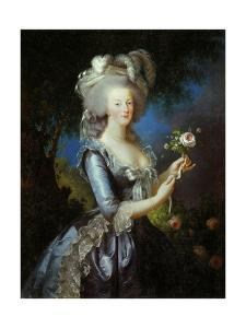 Queen Marie Antoinette with a Rose, 1783 by Elisabeth Vigee Le Brun