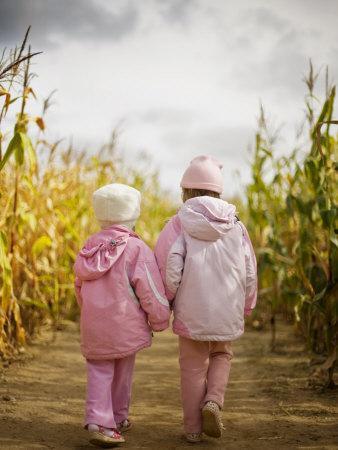 Two Children in Pink, Walking Through Cornfield
