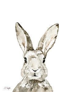 Grey Bunny by Elise Engh