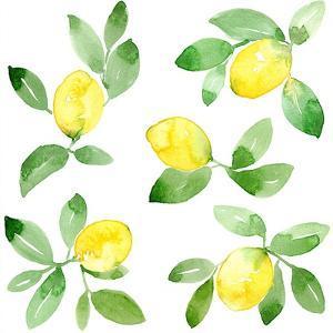 Lemons by Elise Engh