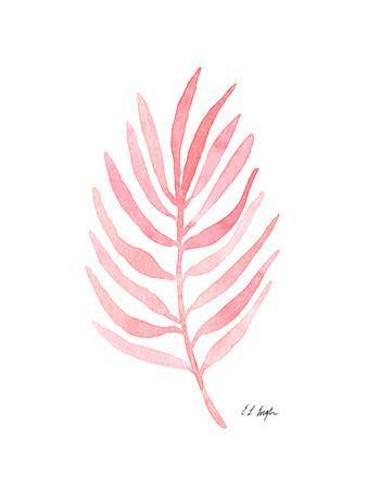 Pink Palm Leaf I