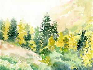 Snowbird Fall by Elise Engh