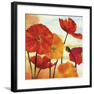 Poppy Variation 2
