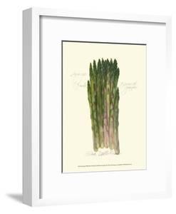 Asparagus Officinalis by Elissa Della-piana