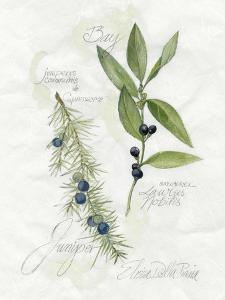 Bay Leaf & Juniper by Elissa Della-piana