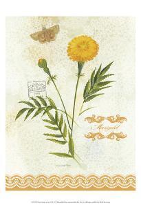 Flower Study on Lace XI by Elissa Della-piana