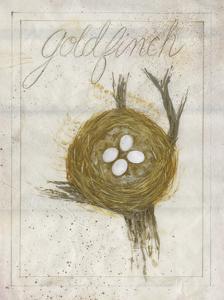 Nest - Goldfinch by Elissa Della-piana