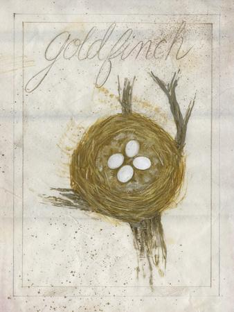Nest - Goldfinch