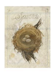 Nest - Sparrow by Elissa Della-piana