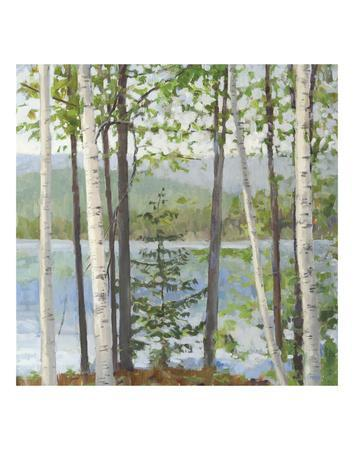 Cooper Lake I