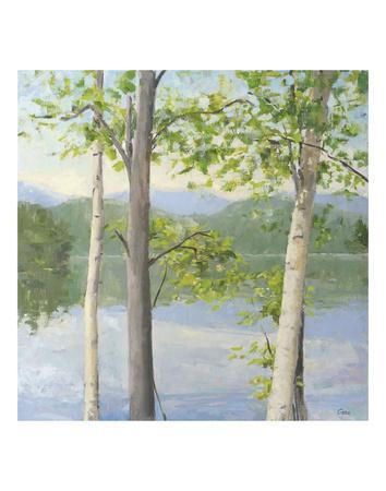 Cooper Lake II