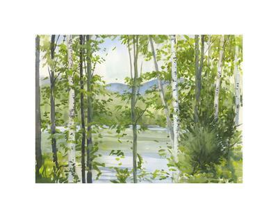Summer Lake III