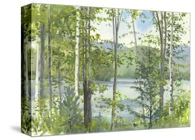 Summer Lake IV
