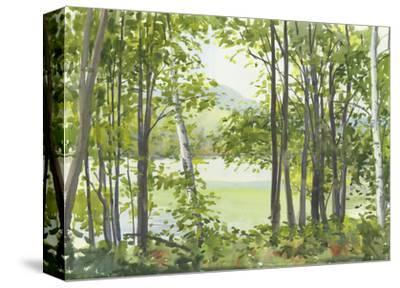Summer Lake V