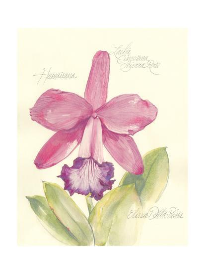 Elissa's Garden V-Elissa Della-piana-Art Print