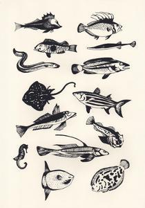 Monotone Plain Fish, 2015 by Eliza Southwood