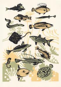 Peach Seaweed Fish, 2015 by Eliza Southwood