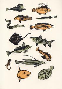 Plain Fish, 2015 by Eliza Southwood
