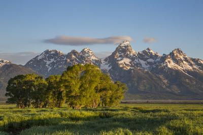USA, Wyoming, Grand Teton National Park, Grand Tetons in the springtime.
