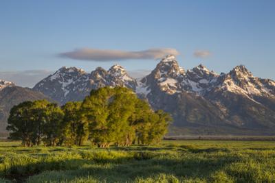 USA, Wyoming, Grand Teton National Park, Grand Tetons in the springtime. by Elizabeth Boehm