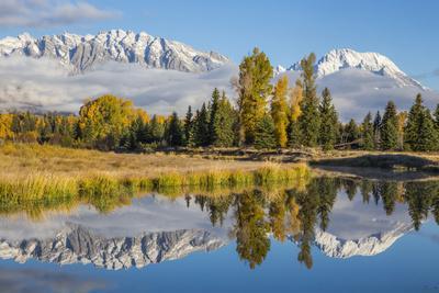 Wyoming, Grand Teton NP. Schwabacher Landing, Mt. Moran and the Teton mountains