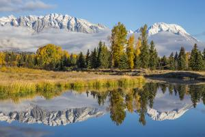 Wyoming, Grand Teton NP. Schwabacher Landing, Mt. Moran and the Teton mountains by Elizabeth Boehm