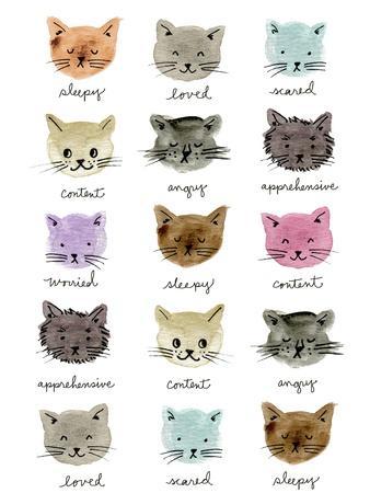Moody Cats
