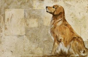 A Dog's Story 2 by Elizabeth Hope