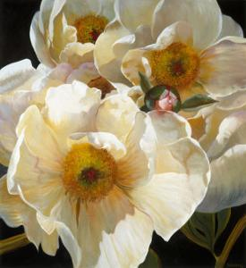 Chinese Peonies Trio by Elizabeth Horning