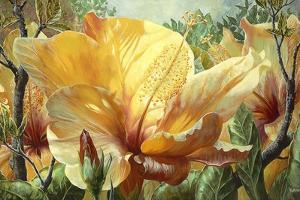 Golden Hibiscus by Elizabeth Horning