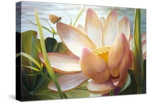 Lotus Landing by Elizabeth Horning