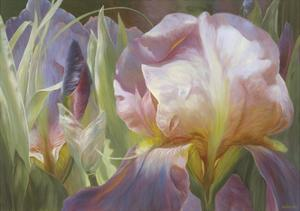 Perrenial Beauties by Elizabeth Horning