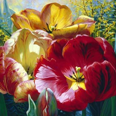 Tulip Trio by Elizabeth Horning
