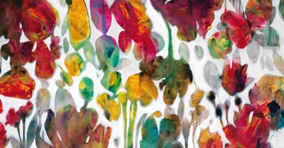 A New Earth by Elizabeth Jardine