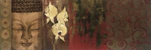 Buddha Orchid by Elizabeth Jardine