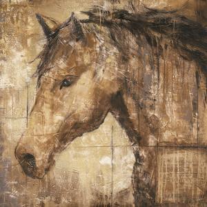 Cavalier by Elizabeth Jardine