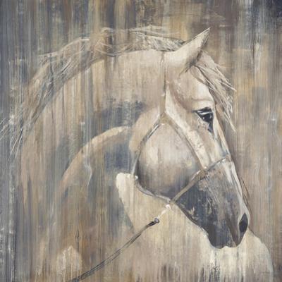 His Majesty by Elizabeth Jardine