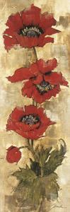Strand of Poppies II by Elizabeth Jardine