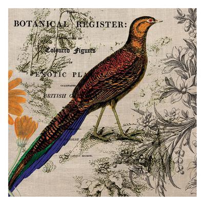 Botanical Register 4