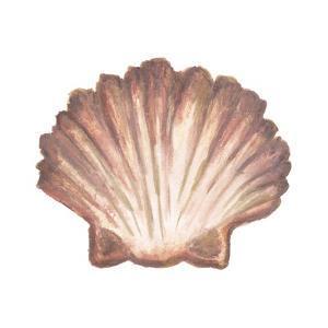 Coastal Icon Coral VI by Elizabeth Medley