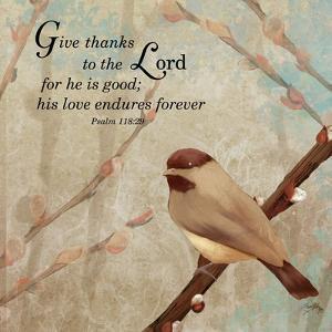 Give Thanks by Elizabeth Medley