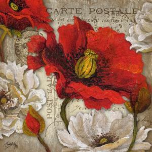 Paris Postcard II by Elizabeth Medley