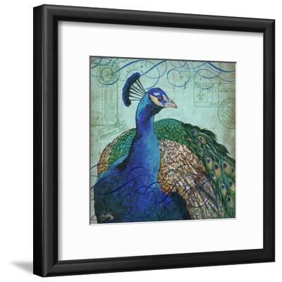Parisian Peacock I