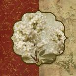 Tuscan Glimpse II-Elizabeth Medley-Premium Giclee Print